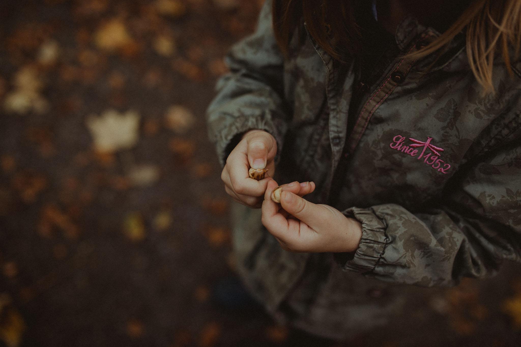 Kinderhände, die eine Eichel halten und untersuchen