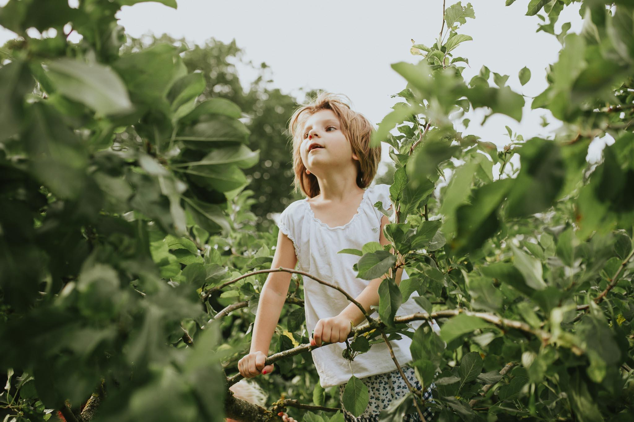 Kind auf dem Baum zwischen den Ästen